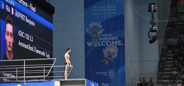 Plongeon : Championnats du Monde du 10 au 16 juillet 2017 à Budapest